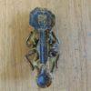Antique_Brass_Spider_Door_Knocker_D533-0518