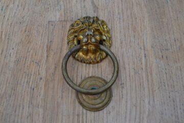 Petite Brass Lion's Head Door Knocker D625-0220 Antique Door Knocker Company